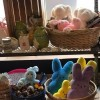 Stuff toys in Bremerton, Washington