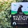 Certified Wildlife Habitat NSB Kings Bay plants