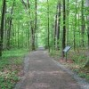 SARATOGA NATIONAL HISTORICAL PARK- victor woods