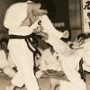 Shorinji Kempo Karate