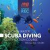 Scuba Diving in Rota, Spain
