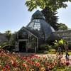 Botanical Conservatory Park in Tacoma, Washington State