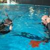 Indoor Pool Scuba Class in Jacksonville, Florida