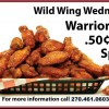 Wild Wings Banner in Kentucky, Fort Campbell