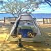 Blue angel park Campsite in Pensacola, Florida