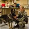 Veterinary Clinic in Tacoma, Washington State