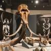 Artifacts Museum in Alaska