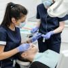 dental005