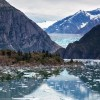 tracy arm fjord cruise port