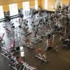 Newman Fitness
