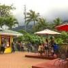 bay view mini-putt and zipline-umbrella