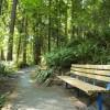 Forest Park Area in Everett, Washington