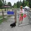 Wapato Dog Park in Tacoma, Washington State
