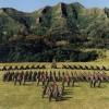 schofield barracks- formation