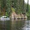 Birch Lake in Eielson, Alaska