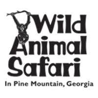 Wild Animal Safari -explore