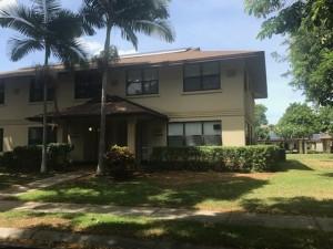 Hickam Communities - JB Pearl Harbor- Hickam-palm tree