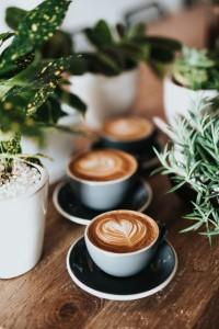 Java Express Latte in El Paso, Texas