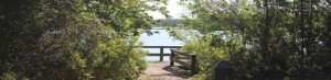Sail Pointe Park Kings Bay lake