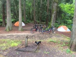 Illahee Park Biking Area in Bremerton Washington