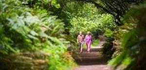 Oak Tree Park in Tacoma, Washington State