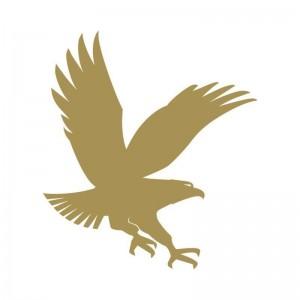 Embry-Riddle Aeronautical University Logo in Colorado, Colorado Springs