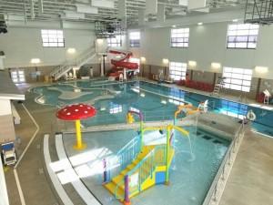Polar Paradise Pool