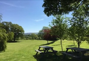 Parks and Picnic area
