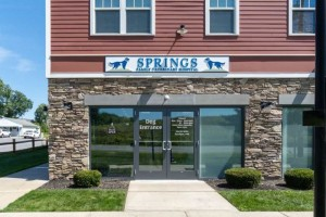 SPRINGS FAMILY VETERINARY HOSPITAL- building