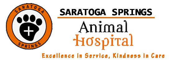 Saratoga Springs Veterinary Hospital