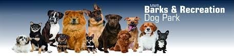 Dog Park - Barks & Recreation- NSB Kings Bay