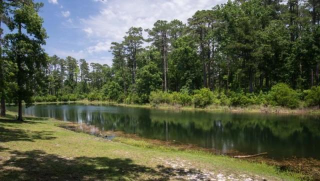 Duck Pond - MCAS Cherry Point