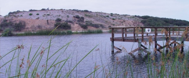 Fish Pond - MCAS Miramar