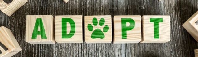 Animal Welfare League - NS Rota