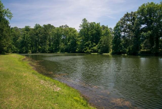 Catfish Pond - MCAS Cherry Point