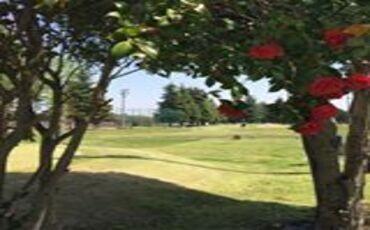 Yokota FSS Par 3 Golf Course