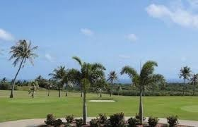 Palm Tree Golf Course