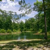 Bartlett Pond - MCAS Cherry Point