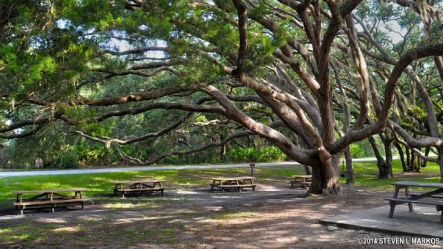 Naval Live Oaks Nature Preserve