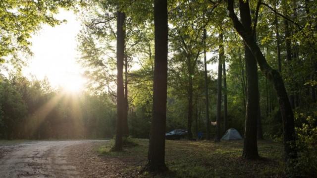 Holbrook Campground - Fort Stewart