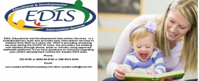Educational and Developmental Intervention Services (EDIS) Sasebo