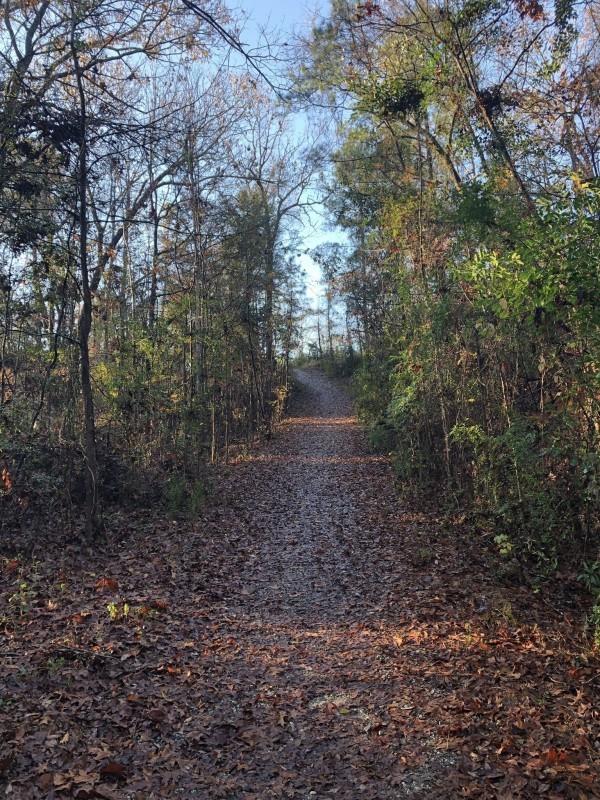 Bike and Pedestrian Trails-Fort Benning