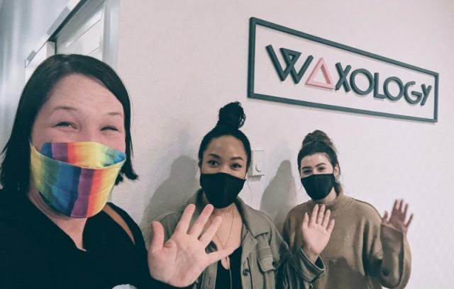 Waxology, a Beauty Boutique - Everett